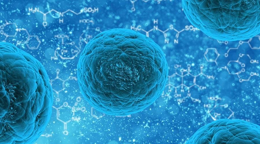 Korak dalje u lečenju dijabetesa matičnim ćelijama: Prvi implantat koji proizvodi insulin