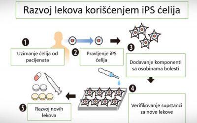 Razvoj novih lekova korišćenjem indukovanih pluripotentnih matičnih ćelija (iPS)